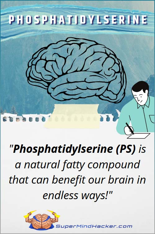 Phosphatidylserine ps nootropic