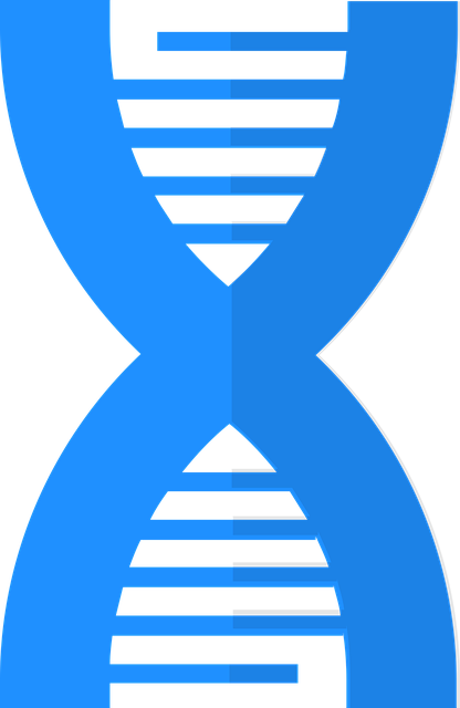Genetics - DNA