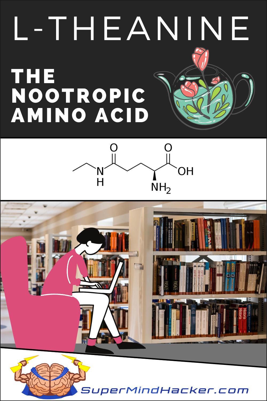 l-theanine amino acid nootropic