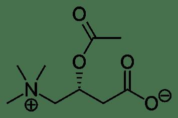 Acetyl-L-Carnitine ALCAR