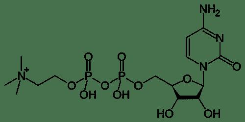 CDP Choline - Citicoline