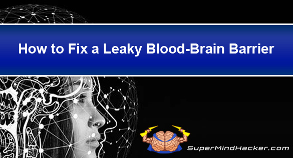 How To Fix A Leaky Blood-Brain Barrier – 13 Ways Revealed!