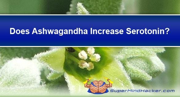 does ashwagandha increase serotonin levels?