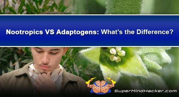 difference between nootropics and adaptogens